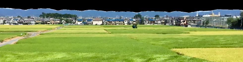 長岡京、大山崎町の街並み