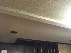 ライオンホームでリノベーション。塗料が吹き付けられた天井です。ざらざらと凹凸があるので、ホコリが付きやすそうです。
