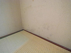 長岡京市の中古マンションリノベーション。和室の壁にカビが生えています。